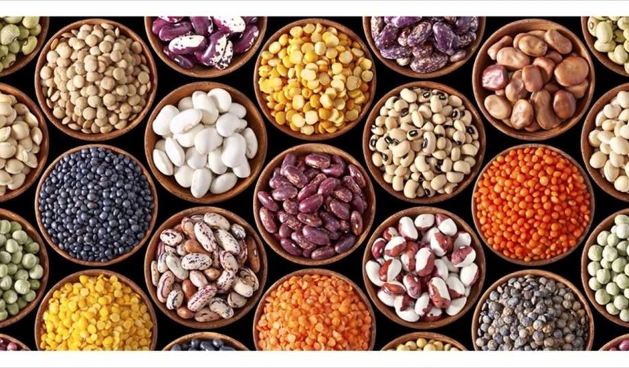 beans_legumes